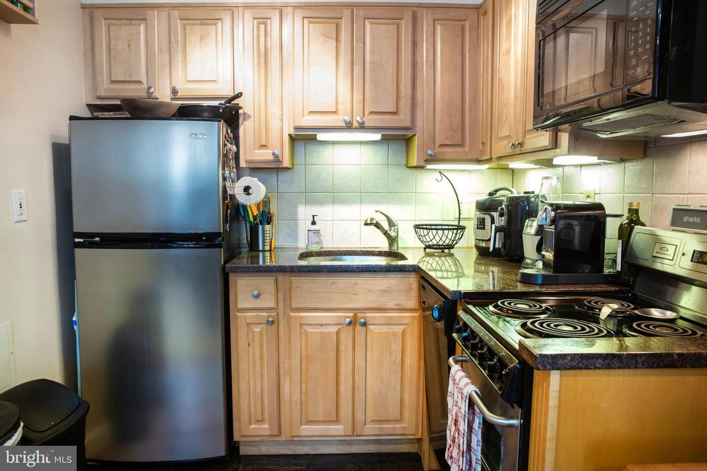 Lower Unit Kitchen West - 726 6TH ST NE, WASHINGTON