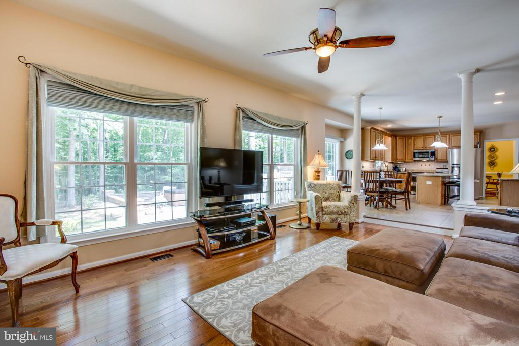 Family room with wood floors and large windows - 9101 SNOWY EGRET CT, SPOTSYLVANIA