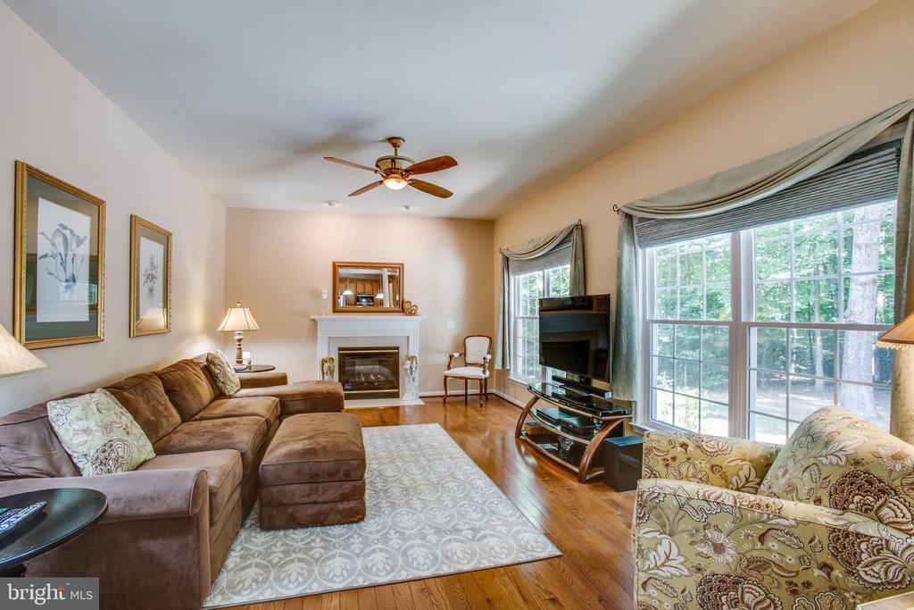 Family room with cozy gas fireplace - 9101 SNOWY EGRET CT, SPOTSYLVANIA