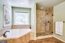Luxurious soaking tub and separate shower - 9101 SNOWY EGRET CT, SPOTSYLVANIA