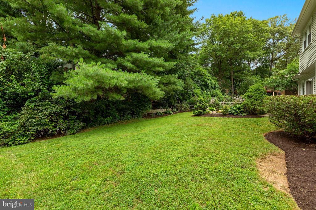 lush yard - 5038 DEQUINCEY DR, FAIRFAX