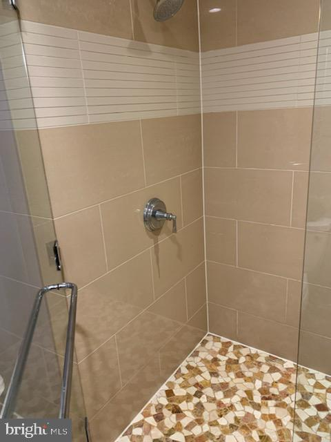 Walk-in shower - 1610 N QUEEN ST #222, ARLINGTON