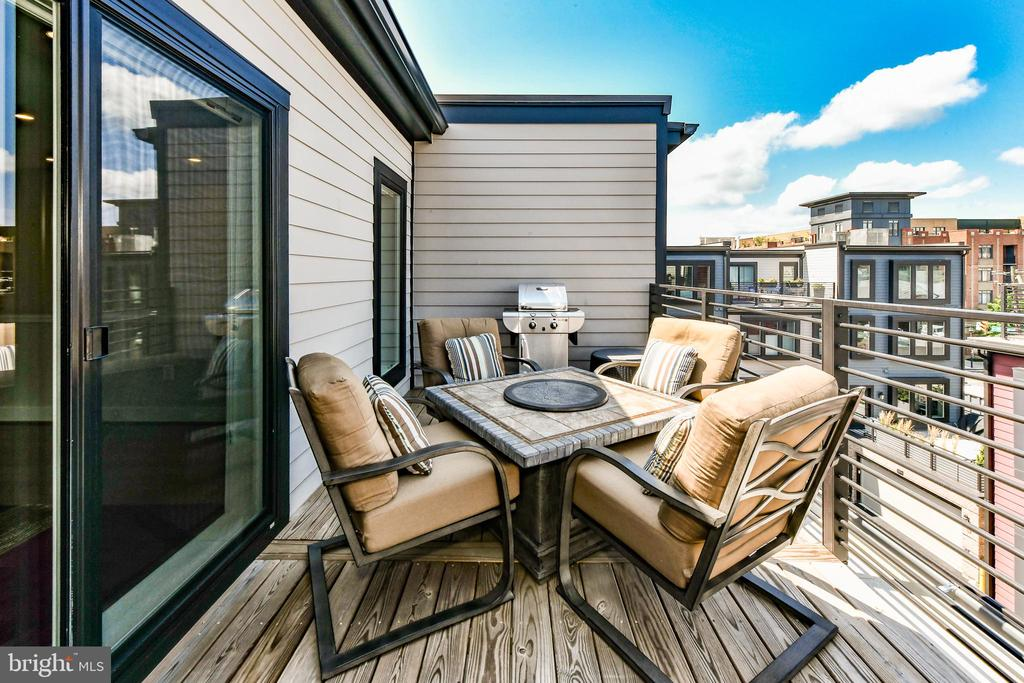 Rest, relax on your rooftop terrace - 603 SLADE CT, ALEXANDRIA