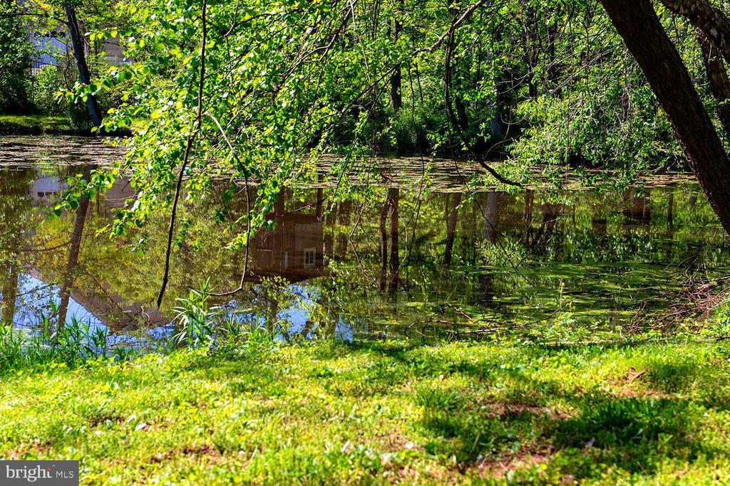 Pond View in Front - 9524 LEEMAY ST, VIENNA