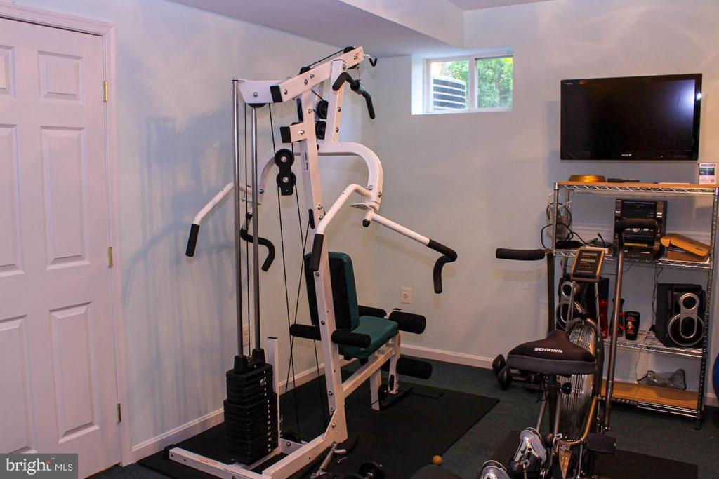 gym room or 5th bedroom - 3220 LACROSSE CT, DUNKIRK