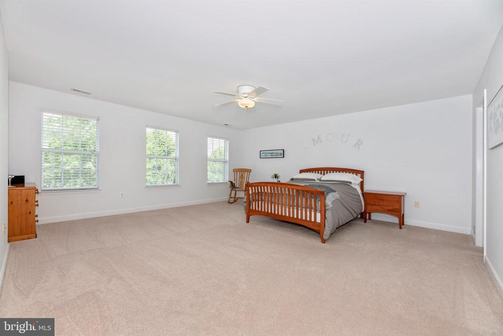 Large master bedroom suite with walk in closet. - 5835 RIVER OAKS CT, FREDERICK