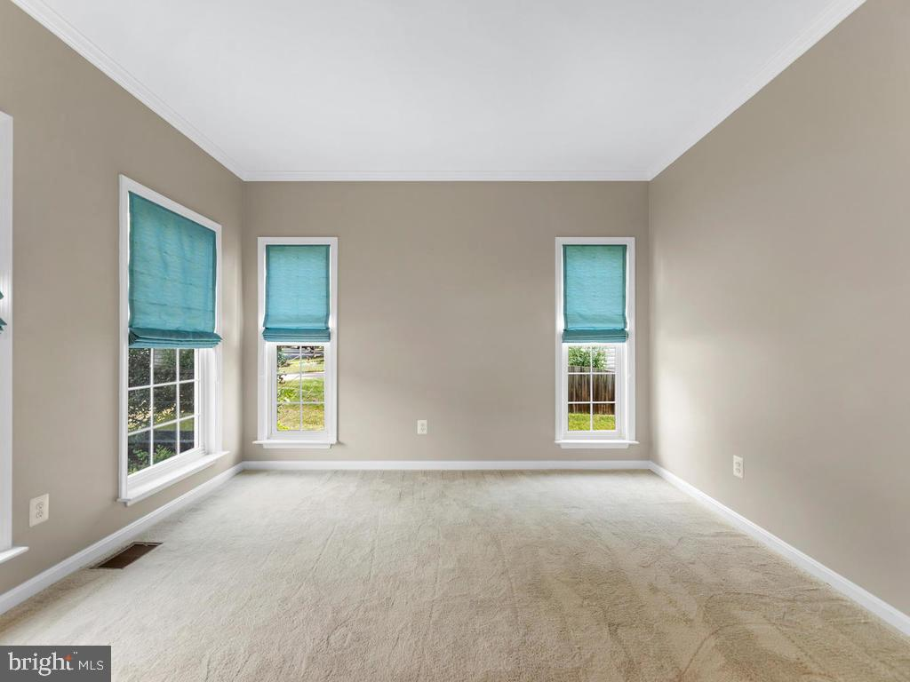 Living room crown molding, carpeting, 4 windows - 358 SUGARLAND MEADOW DR, HERNDON