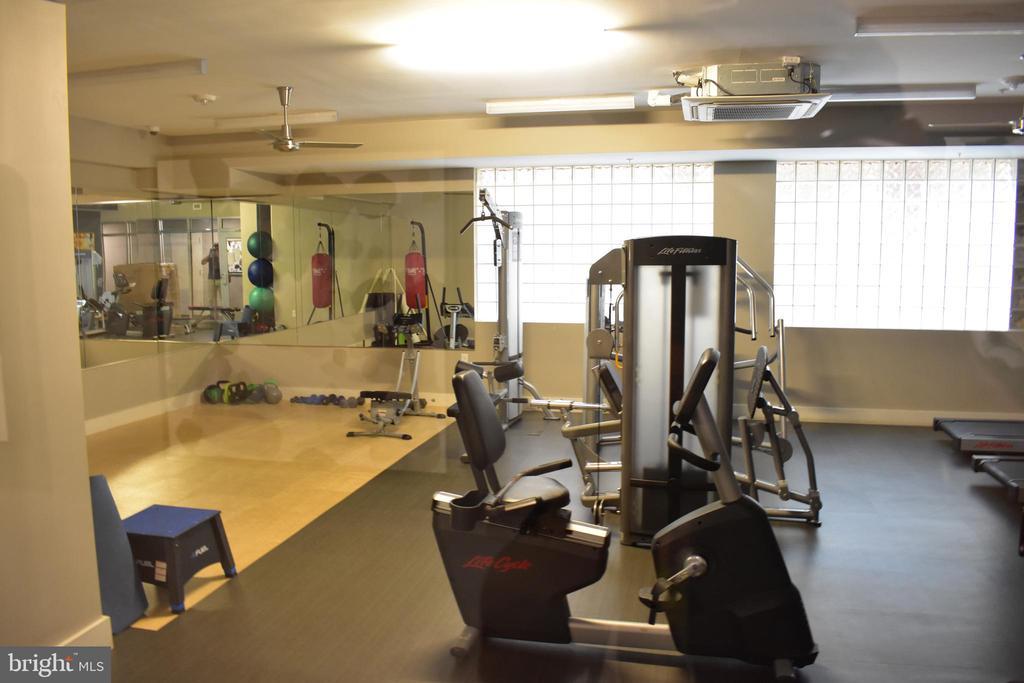 Fitness Room - 1320 FENWICK LN #401, SILVER SPRING