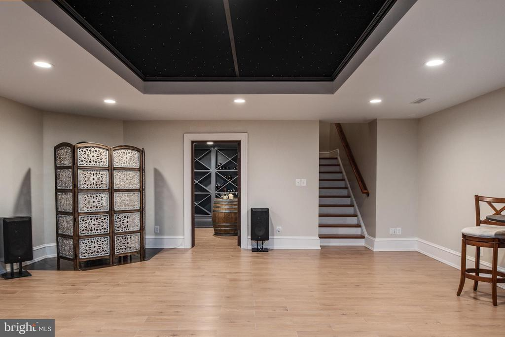 Dance floor with starry night ceiling! - 8205 ASHY PETRAL CT, SPOTSYLVANIA