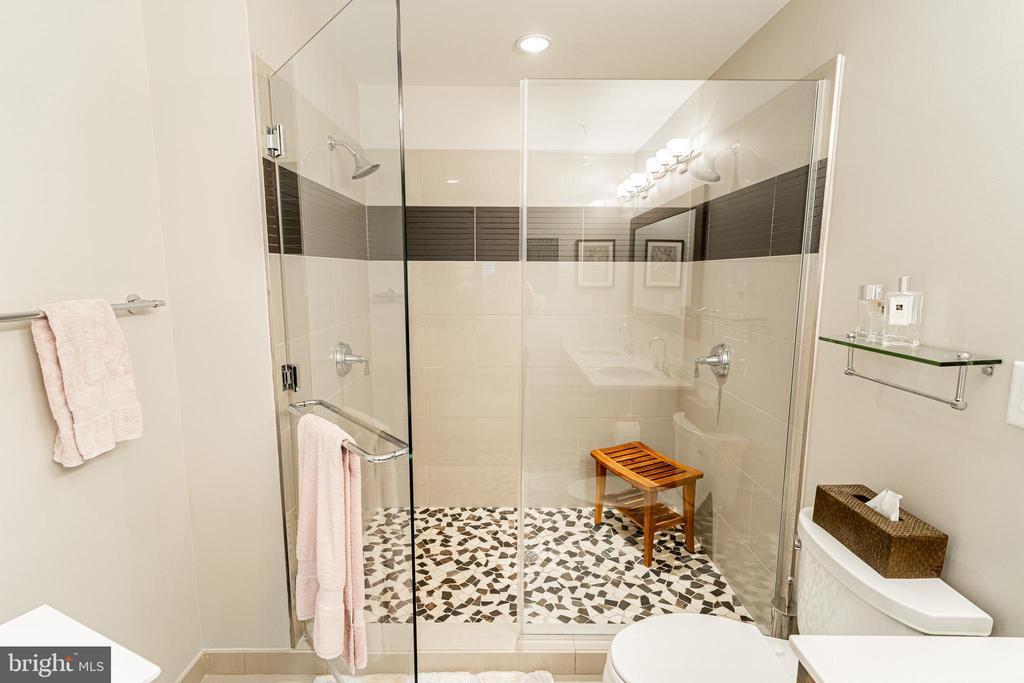 Master shower / dual shower heads - 1610 N QUEEN ST #245, ARLINGTON