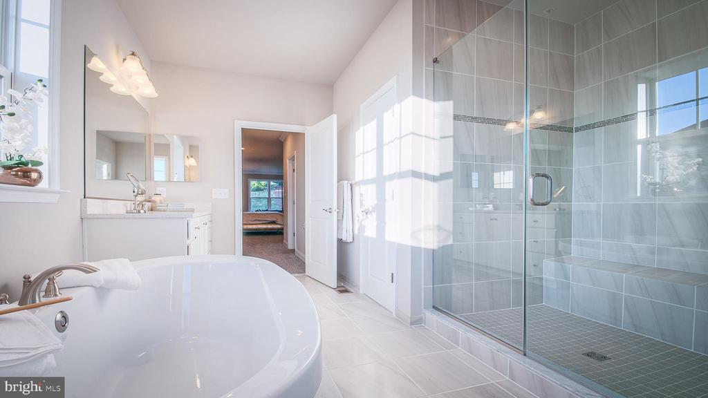 Owner's Bath 2 - 10382 SPRINGSIDE TER, IJAMSVILLE