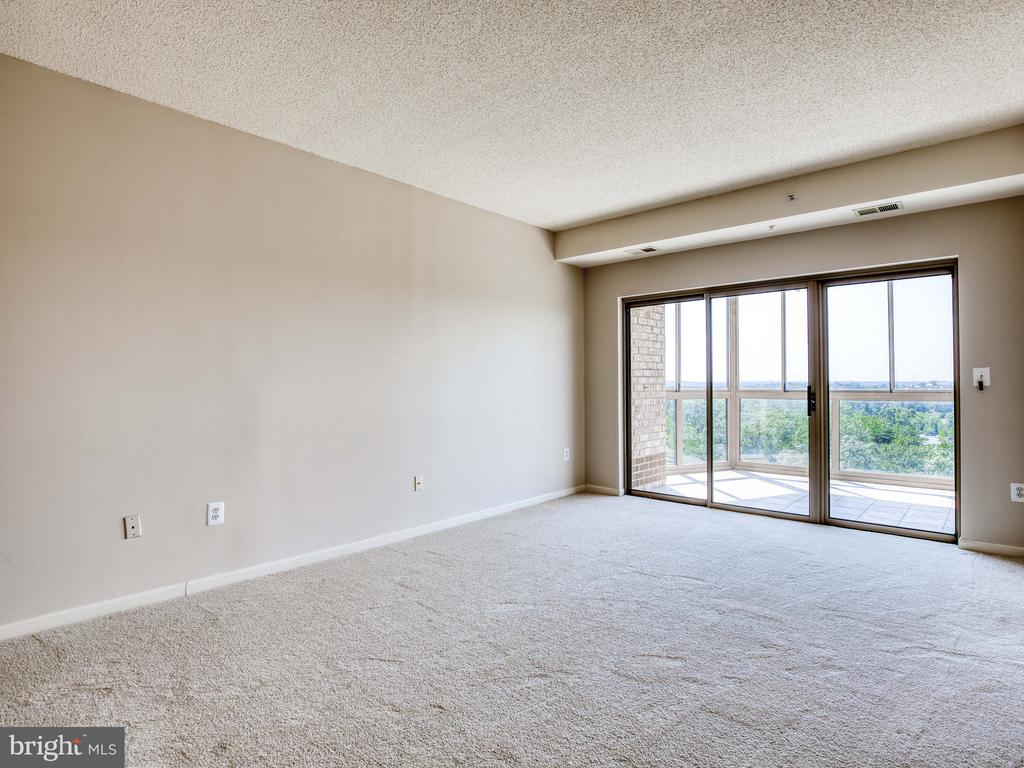 New plush carpet - 19375 CYPRESS RIDGE TER #804, LEESBURG