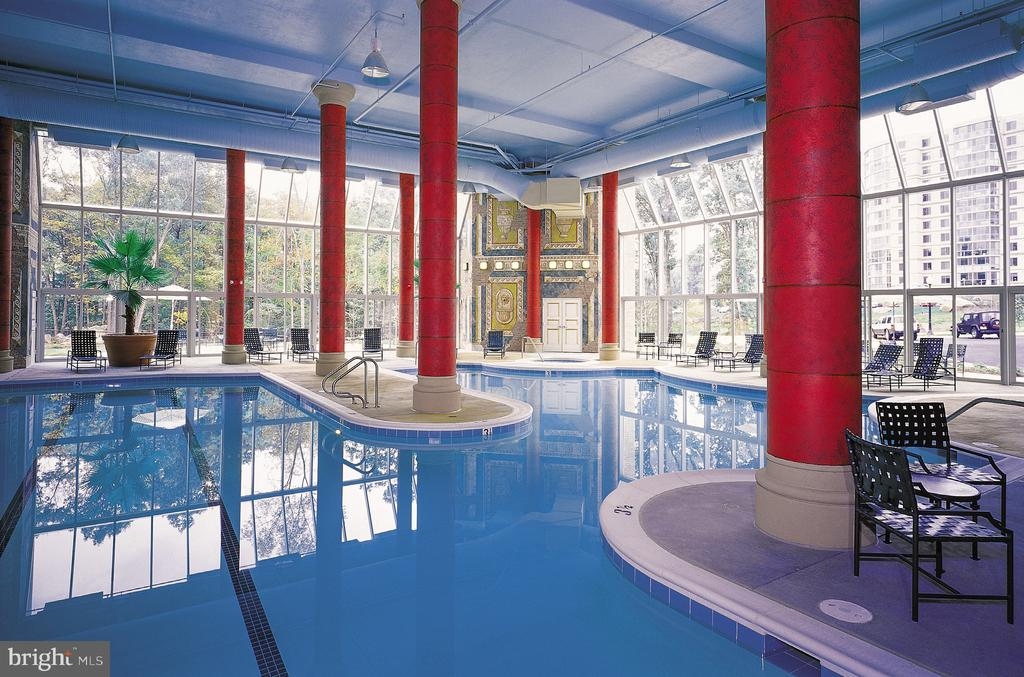 Heated Indoor Pool - 19375 CYPRESS RIDGE TER #804, LEESBURG