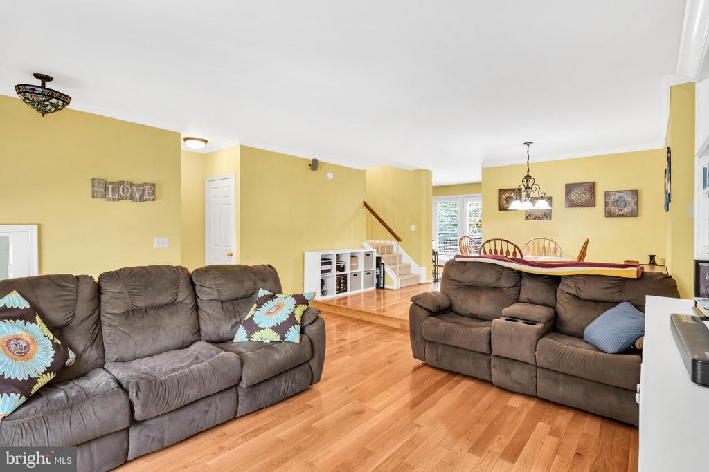 Spacious family room - 249 DAVIS AVE SW, LEESBURG