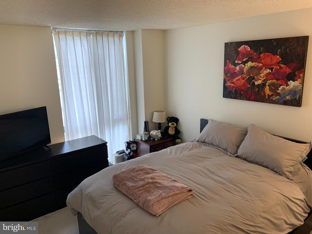 Plenty of space in the bedroom! - 2311 PIMMIT DR #311, FALLS CHURCH