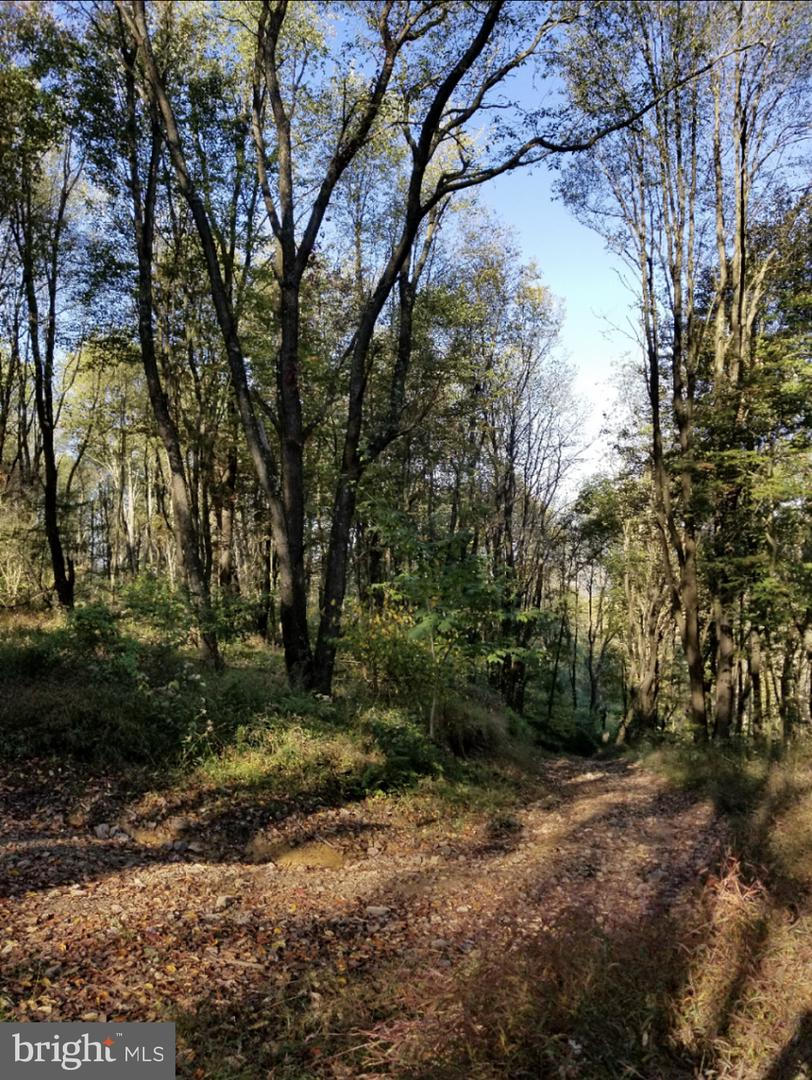 Land for Sale at Johnstown, Pennsylvania 15909 United States
