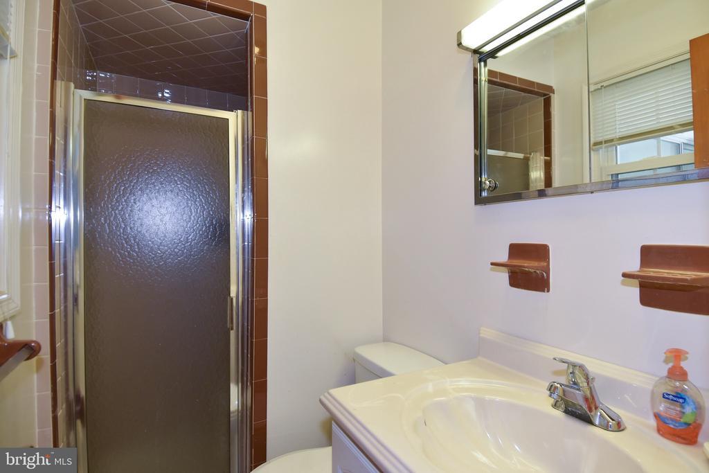 Master Bathroom - 222 OLDE CONCORD RD, STAFFORD