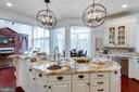 Gorgeous Granite & Pendant Lighting Adorn Island. - 2508 COULTER LN, OAKTON