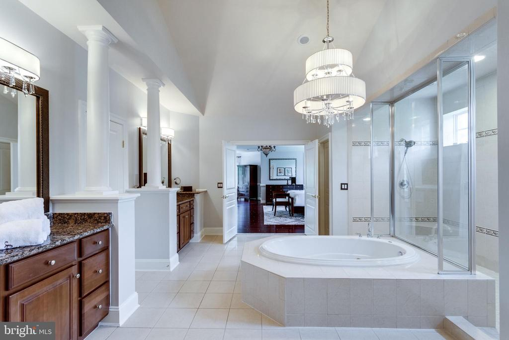 Elegant Master Bath with Chandelier. - 2508 COULTER LN, OAKTON