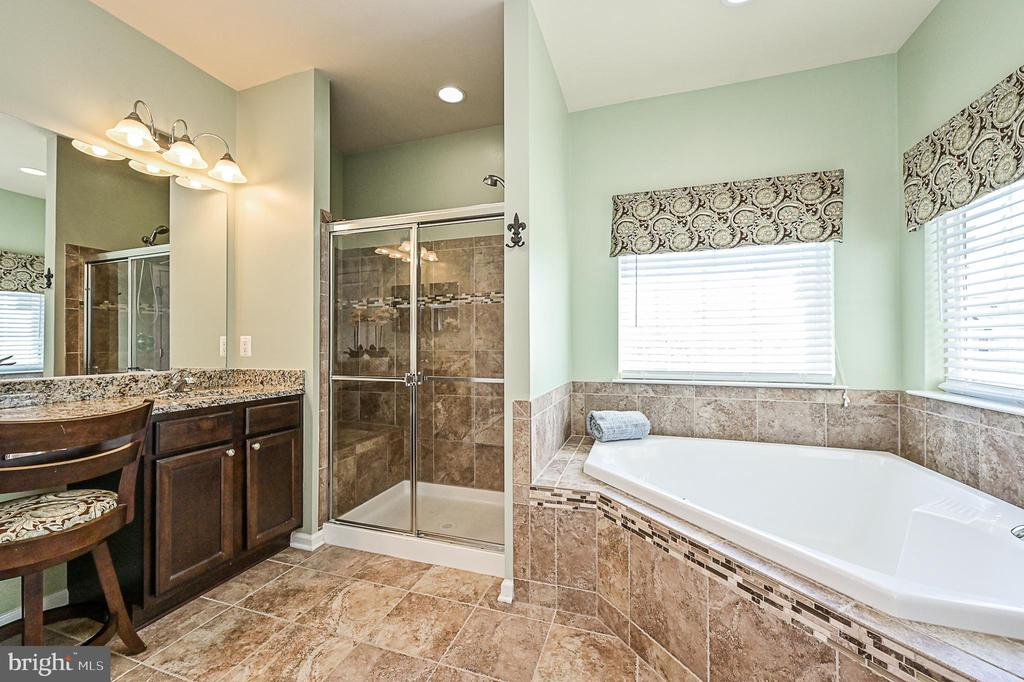 Soaking tub and separate shower. - 42297 DEMARCO TER, CHANTILLY