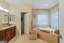 Master Bathroom - Gorgeous & Spacious - 42050 MIDDLEHAM CT, ASHBURN