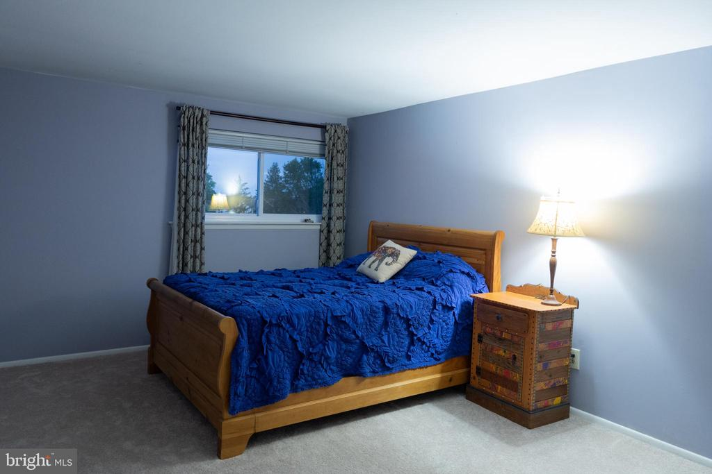 Spacious owner's bedroom - 1004 WARWICK CT, STERLING