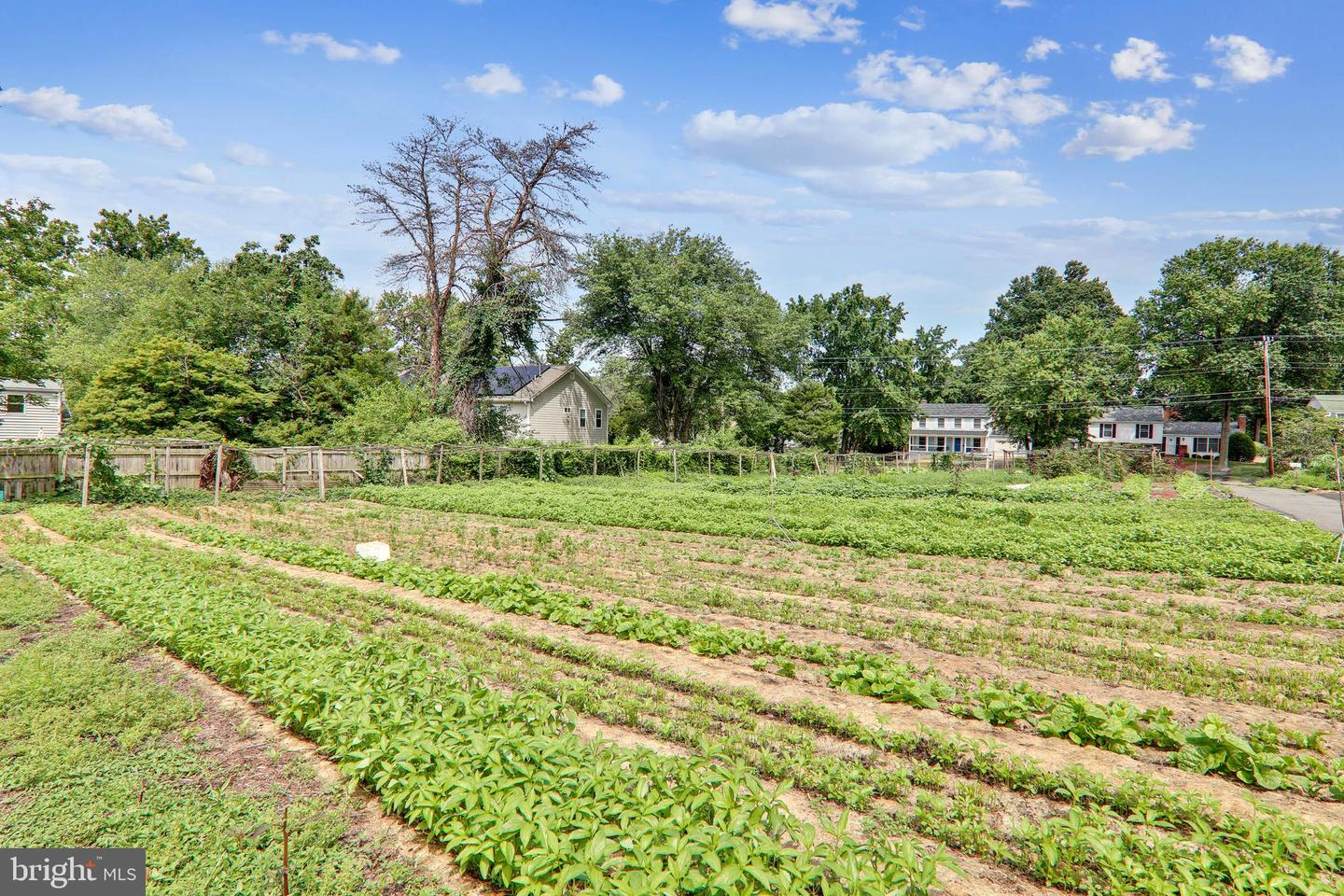 Land for Sale at Falls Church, Virginia 22042 United States