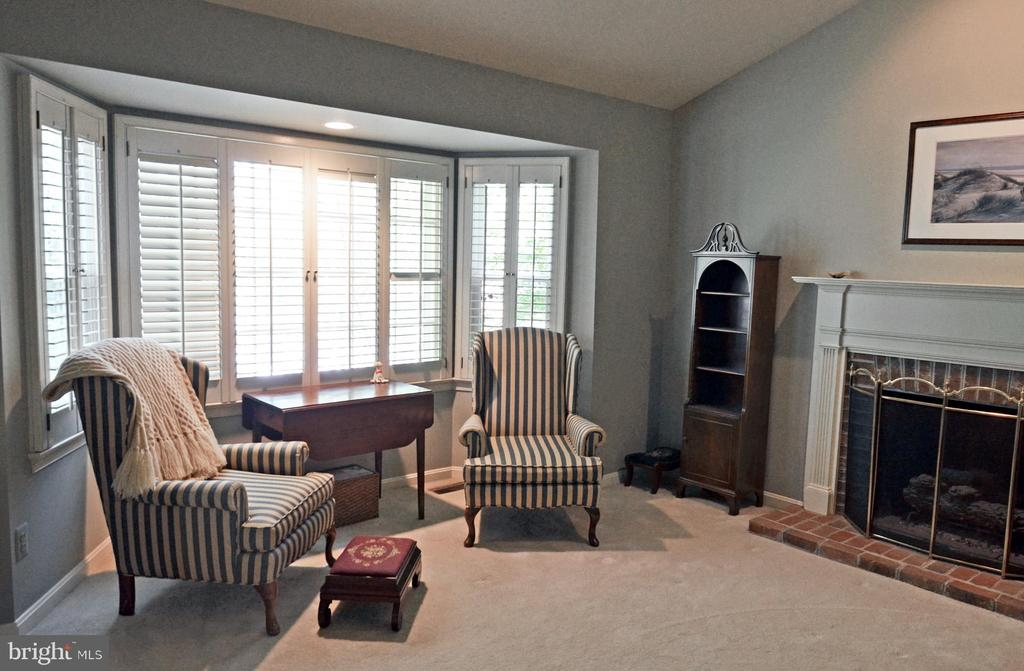 Owner's Suite with Fireplace w/Gas Logs - 14504 S HILLS CT, CENTREVILLE