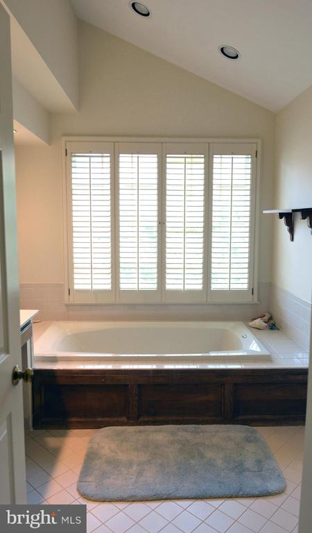 En Suite Owner's BA w/Jetted Soaking Tub - 14504 S HILLS CT, CENTREVILLE