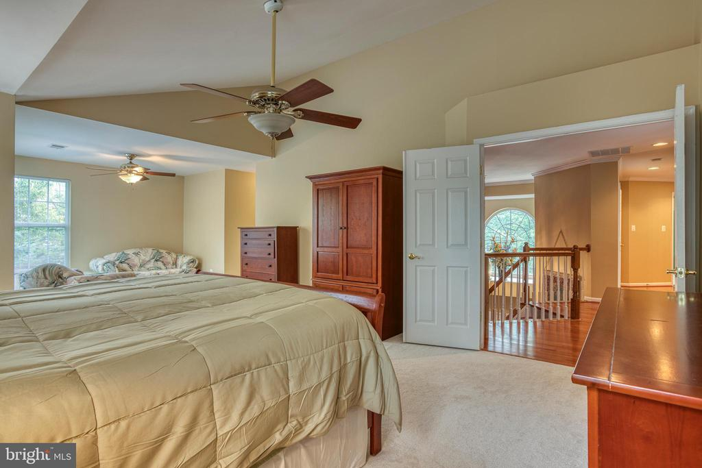 Owner's suite with double door entry - 43435 MINK MEADOWS ST, CHANTILLY