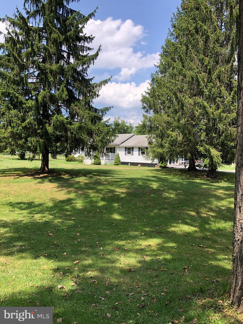 Single Family Homes per Vendita alle ore Gore, Virginia 22637 Stati Uniti