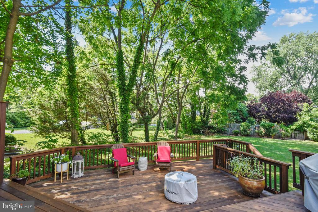 Fabulous IPE deck for your relaxation - 840 ELDEN ST, HERNDON