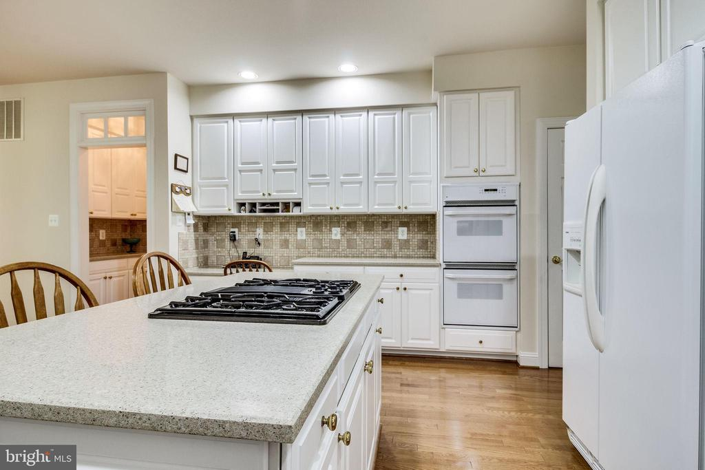 Gorgeous Granite and hardwood floors - 3720 SPICEWOOD DR, ANNANDALE
