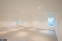 Lower level - game area - egress windows - 110 TAPAWINGO RD SW, VIENNA