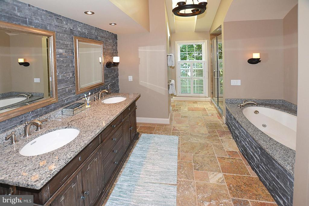 Updated Master bath. Gorgeous Stone /Granite - 20418 ROSEMALLOW CT, STERLING