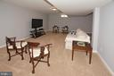 Very Large Recreation Room - 20418 ROSEMALLOW CT, STERLING