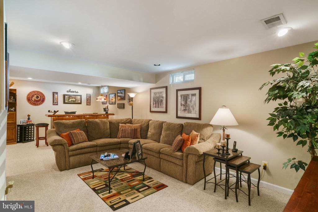 Huge rec room LL - 6411 SPRINGHOUSE CIR, CLIFTON
