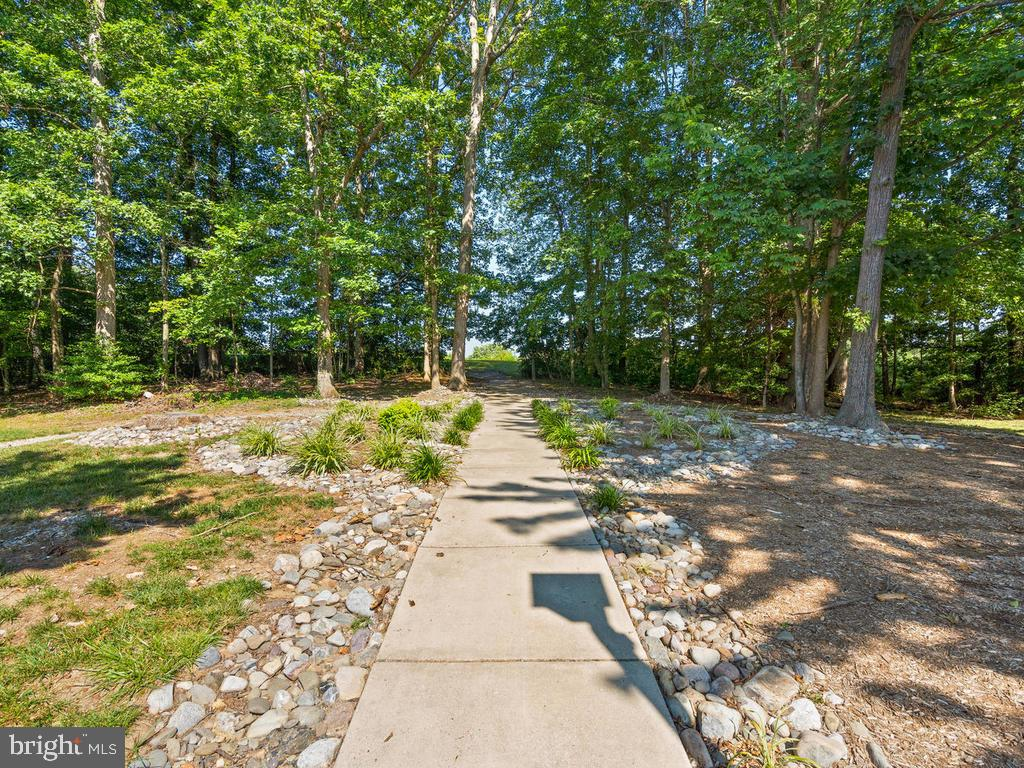 Walk way in front of home - 9193 FOREST BREEZE CT, SPRINGFIELD