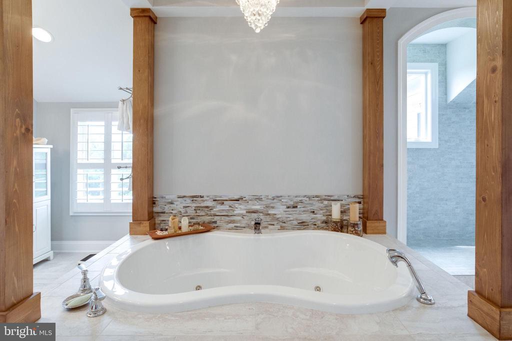 Master Bath w/Infinity Spa Tub - 41820 RESERVOIR RD, LEESBURG