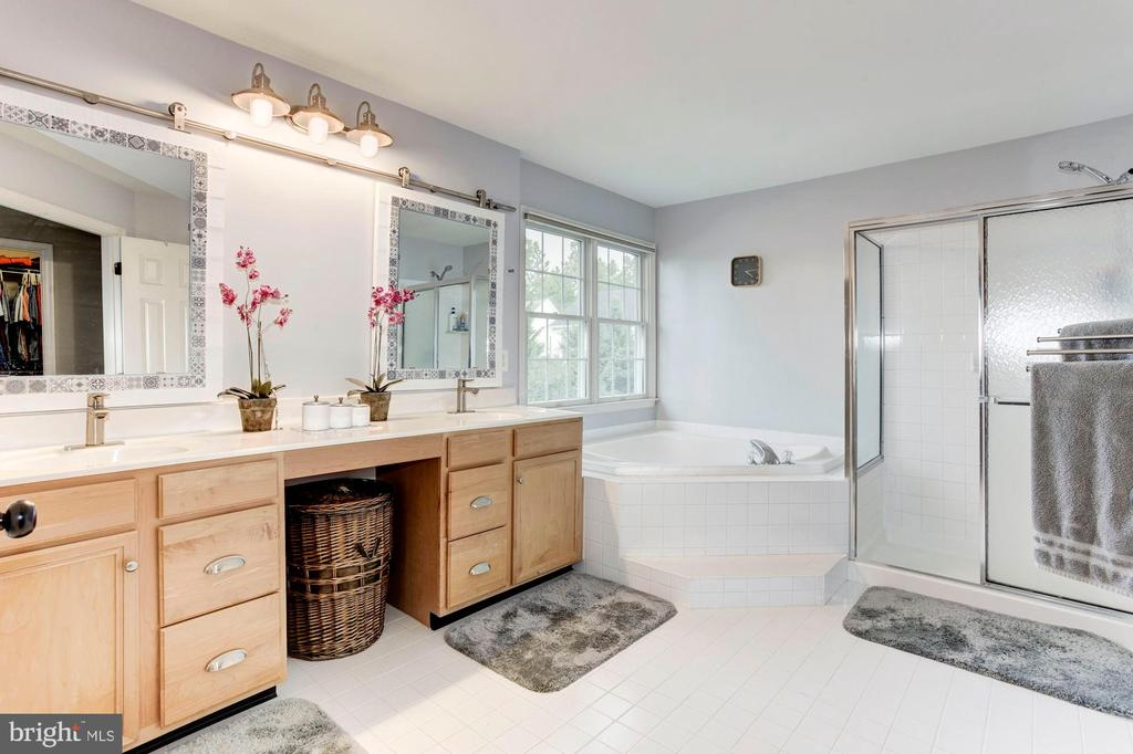 Master Bath - 26048 IVERSON DR, CHANTILLY