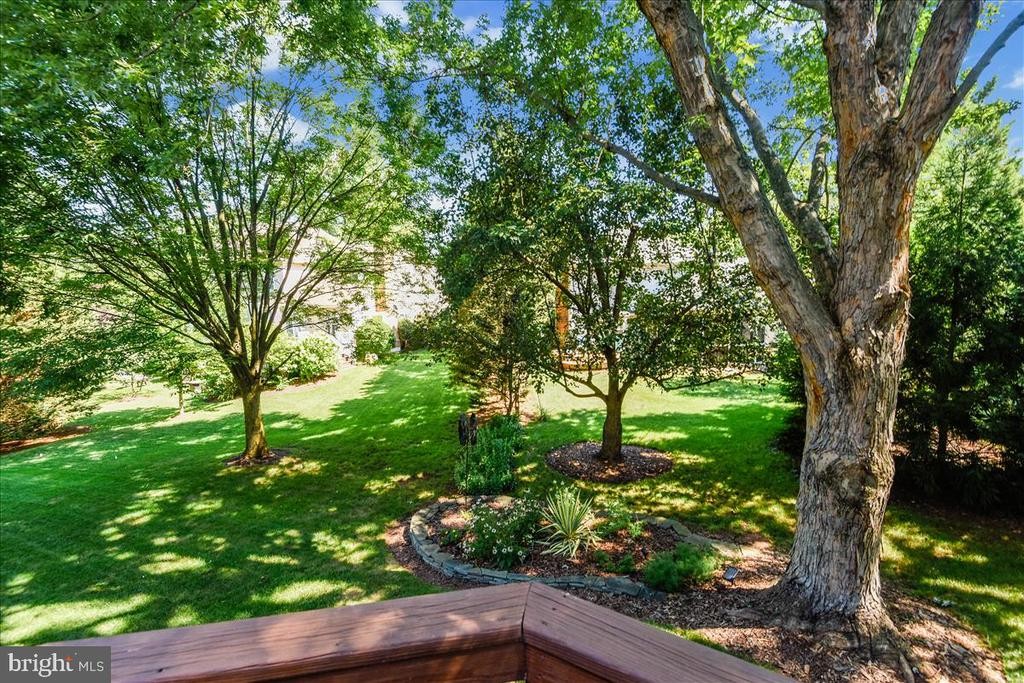 Professional landscaping w/lights. - 14826 HUNTING PATH PL, CENTREVILLE