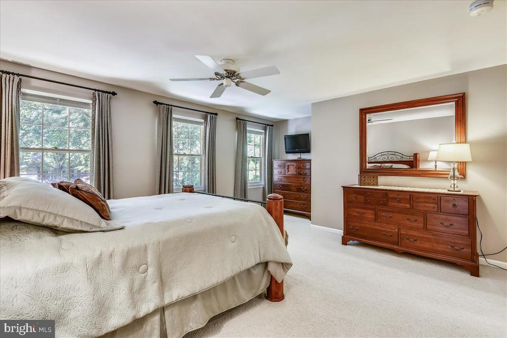 Owners suite with sitting room and spa like bath - 14826 HUNTING PATH PL, CENTREVILLE