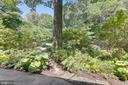 Front plantings - 6811 WINTER LN, ANNANDALE