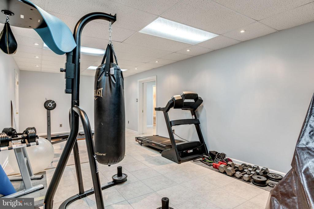 Exercise Room/ Game Room - Basement - 1676 LOUDOUN DR, HAYMARKET