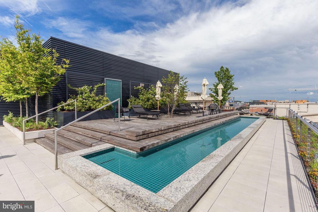 Rooftop plunge pool - 920 I ST NW #715, WASHINGTON