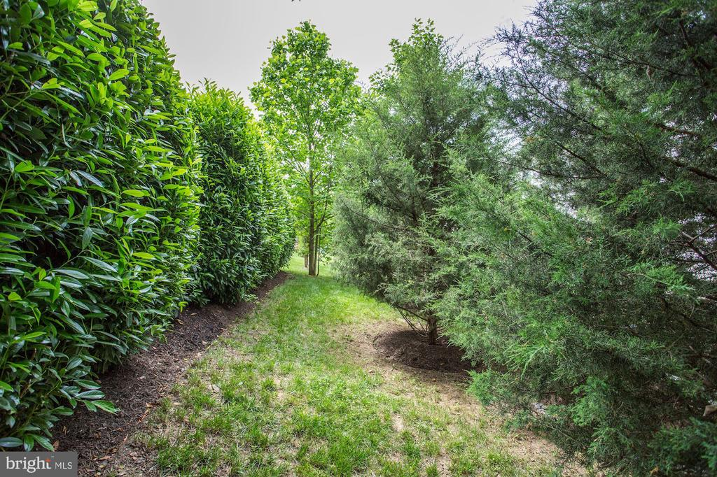 Wonderful green space - 7142 DEGROFF CT, ANNANDALE