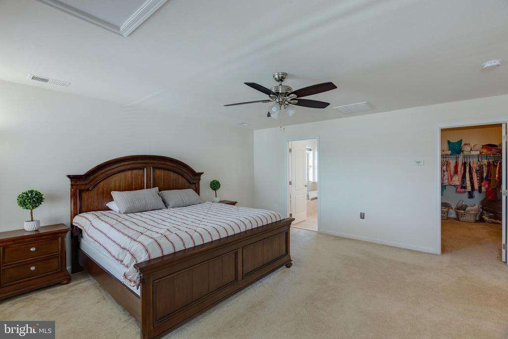Master bedroom with large walk in closet - 43172 ASHLEY HEIGHTS CIR, ASHBURN