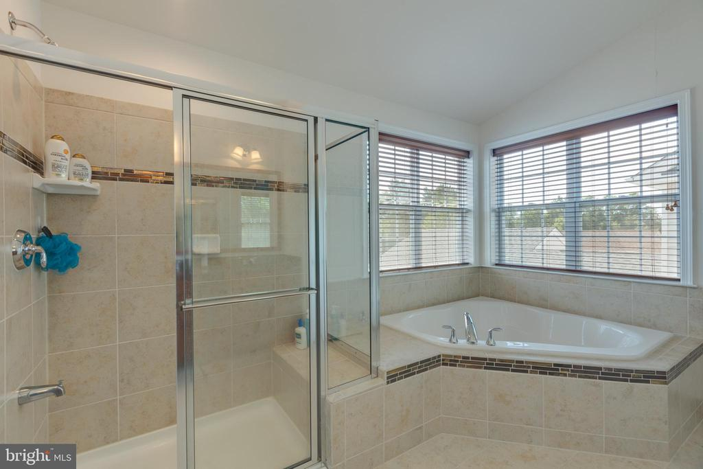 Master bathroom - 43172 ASHLEY HEIGHTS CIR, ASHBURN