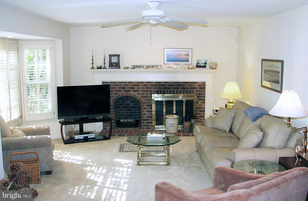 Family Room with Ceiling Fan & Bay Window - 14504 S HILLS CT, CENTREVILLE