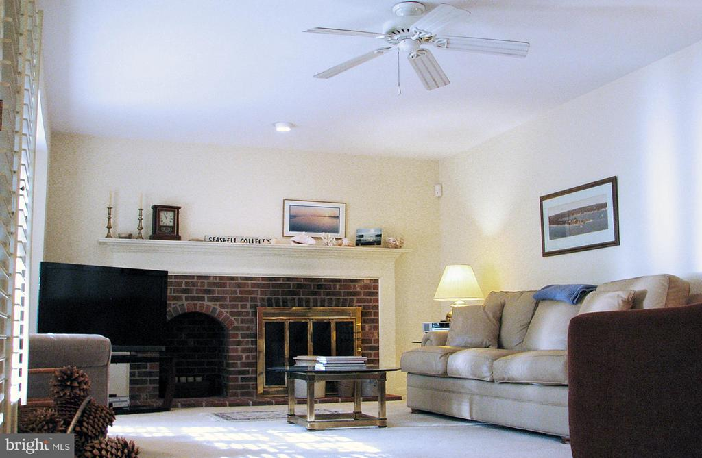 FR Fireplace  with Gas Logs & Wood Storage Alcove - 14504 S HILLS CT, CENTREVILLE